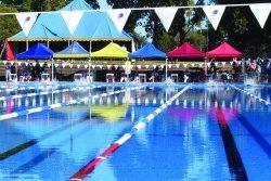 The Swimming Expert